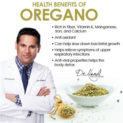 Teh Oregano manfaat daun oregano untuk kesehatan dan kecantikan