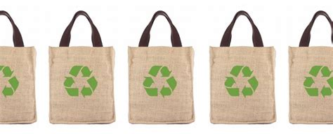 Feedealio Offers Personalized Rss Shopping Feeds eco friendly shopping bags make us buy more junk food