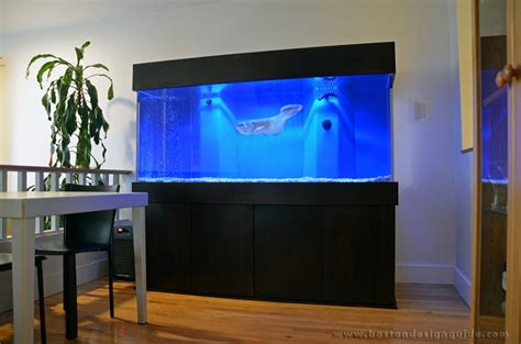 aquarium architecture custom aquarium design boston aquariums