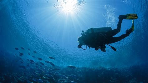 dive in scuba diving courses where can i learn to dive in the uk