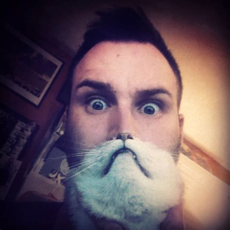 Cat Beard Meme - cat beards a photo meme where people place a cat in front