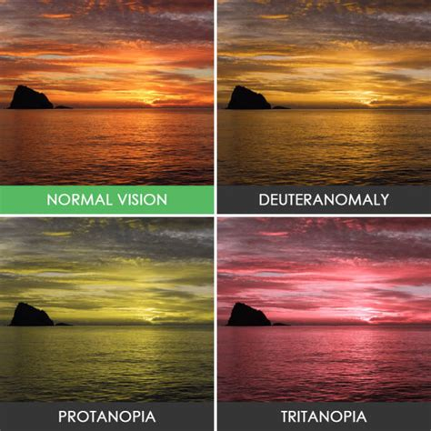 what color does a see take a look at the world the way colorblind see it