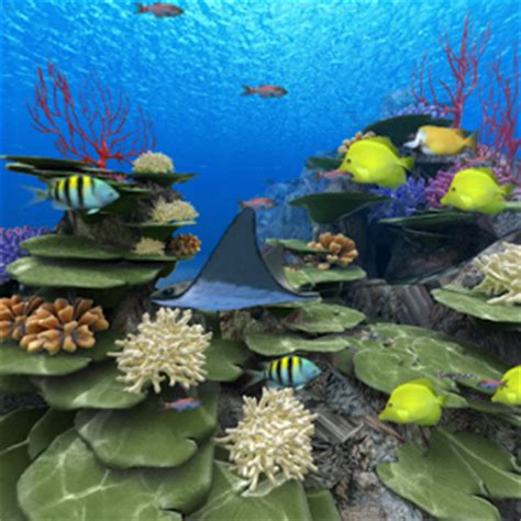 coral apk coral reef of kerama android apps on play