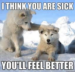 Funny Feel Better Memes - 25 most funniest memes about being sick images and pictures