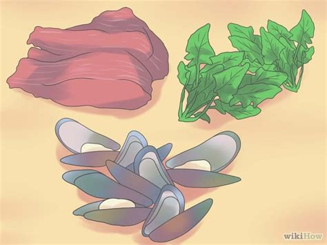 supplements h pylori 3 ways to cure h pylori naturally wikihow