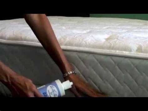how to apply diatomaceous earth for bed bugs diatomaceous earth bed bugs youtube