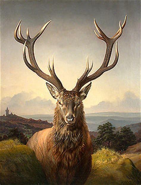 Wildlife The Free Encyclopedia