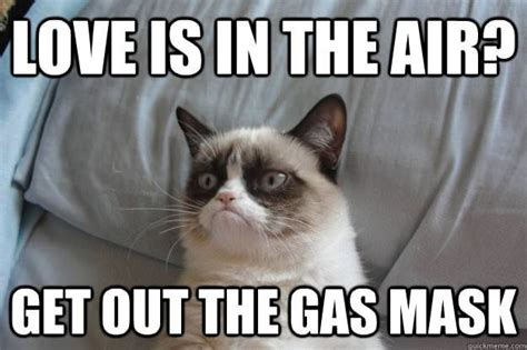 Grumpy Cat Meme Valentines Day - 301 moved permanently