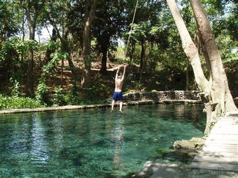 rope swing into pool love the idea of a rope swing into the pool forman house