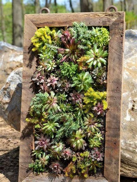 diy succulent vertical planter gardening ideas pinterest