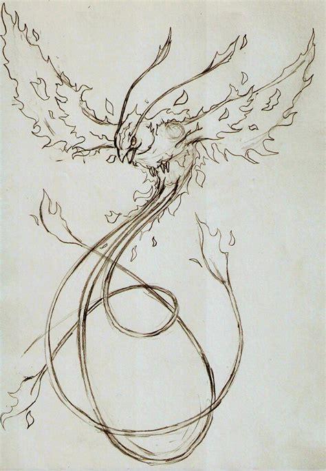 tattoo phoenix sketch phoenix sketch by jamindavey on deviantart