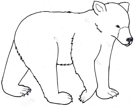 coloring pages for going on a bear hunt going on a bear hunt free colouring pages