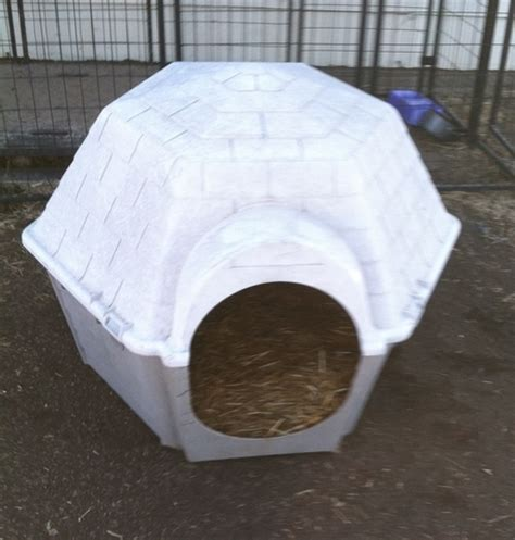igloo dog house accessories igloo dog house nex tech classifieds