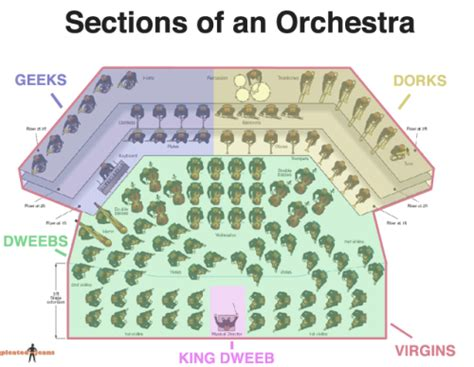 the sections of the orchestra sections of the orchestra
