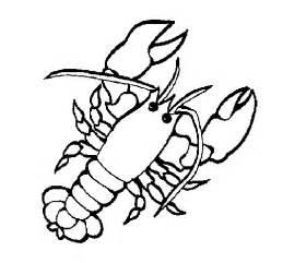lobster coloring coloringcrew