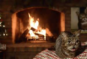 Yuletide Fireplace Channel by Yule Log Livestream 2016 Best Channel Options To