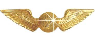 Airline wings logo