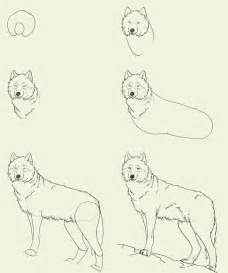 How To Draw A Wolf That Is Easy How To Draw A Wolf Dr