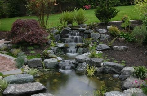 triyae garden pond maintenance various