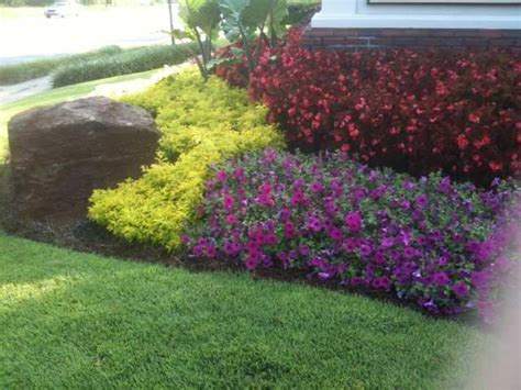 Sun Flower Beds by Need Suggestions With Your Annual Flower Beds The Home