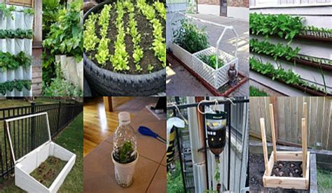 garden decoration hacks seven easy garden hacks for greener gardens green diary