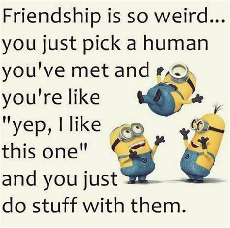 funny minion quotes wednesday quotesgram