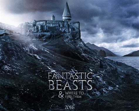 fantastic beasts and where to find them the illustrated collector s edition harry potter books fantastic beasts and where to find them hd desktop