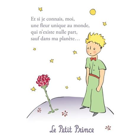 post card the little prince une fleur unique au monde 2