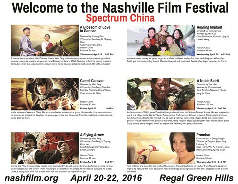 china film festival spectrum china nashville film festival project pengyou