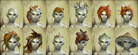 guild wars 2 hairstyles physical appearance sylvari guild wars 2 wiki gw2w