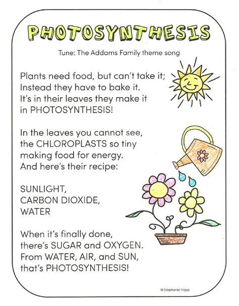 theme definition ks3 photosynthesis for kids primary theme park