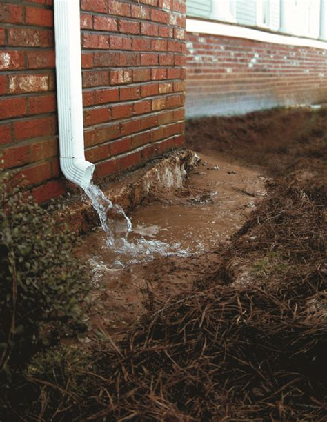 drainage issue in backyard clues that your knoxville home may have a drainage issue