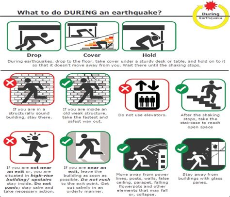 earthquake procedure international journal of health system and disaster
