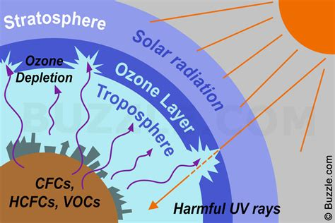 Pisau 6in Ozone causes and effects of ozone layer depletion that are painfully true
