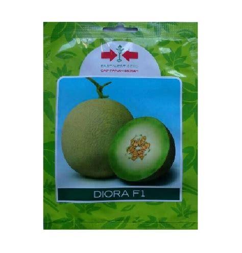 Benih Melon Cap Panah Merah benih melon diora f1 40 biji panah merah bibitbunga