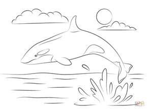 killer whale coloring pages killer whale is jumping out of water coloring page