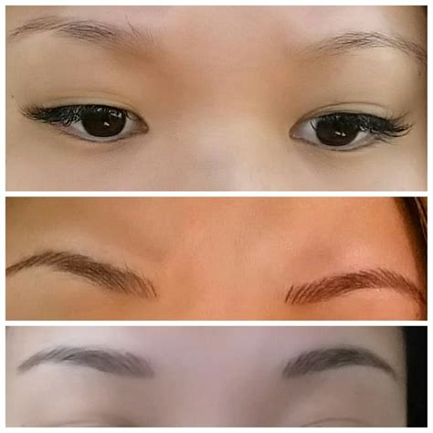 tattoo eyebrows ta fl before after completely healed yelp