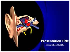 ear anatomy model powerpoint templates powerpoint