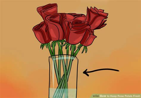 how to keep flowers fresh overnight how to keep flower petals fresh overnight best flowers