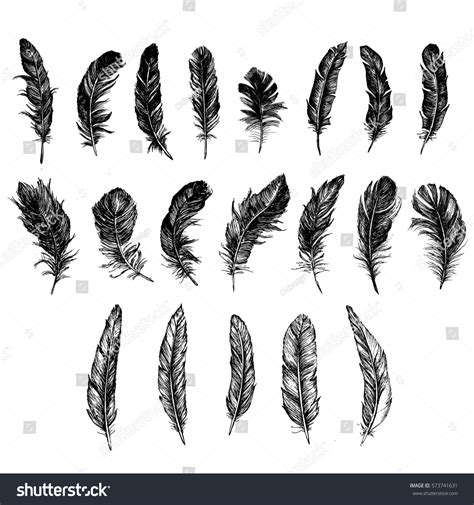 black and white feather pattern vector black white feather pattern stock vector 573741631