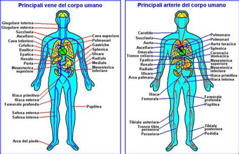vasi linfatici gambe corso massaggio emolinfatico european wellness institute