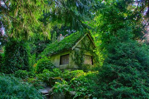 Cottage Forest by 10 Amazing Peaceful Cottages Yeahmag