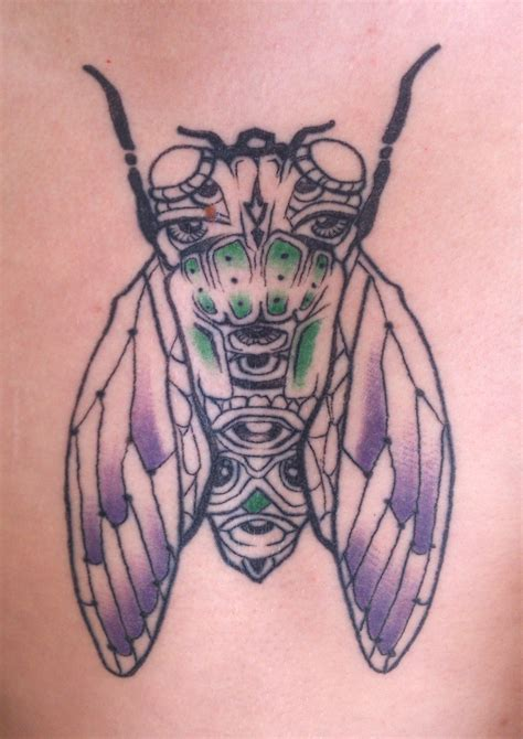 cicada tattoo inked design sam shennan sydney graphic