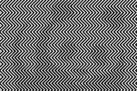 ilusiones opticas humanas 191 puedes ver el animal oculto en esta ilusi 243 n 243 ptica