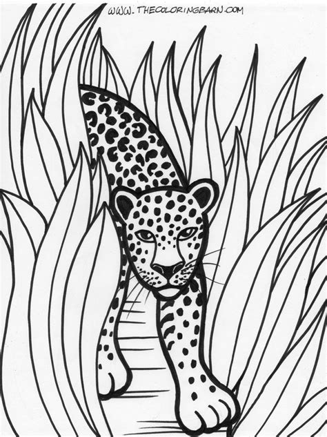 printable coloring pages rainforest animals rainforest printable coloring pages the coloring barn