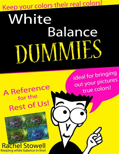 For Dummies Template Book Cover image dummies book cover template