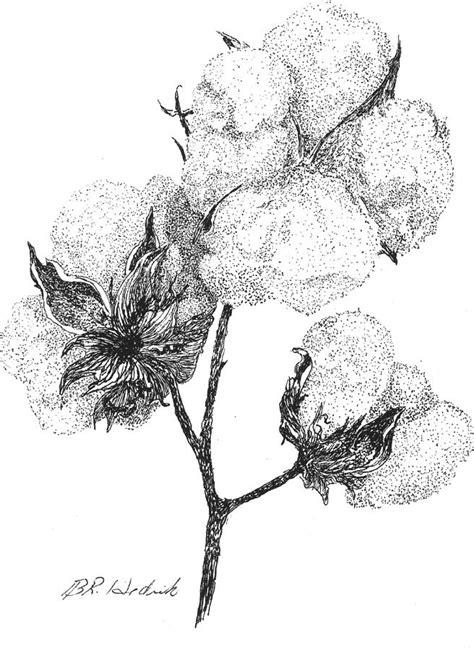 Alabama Cotton by Barney Hedrick