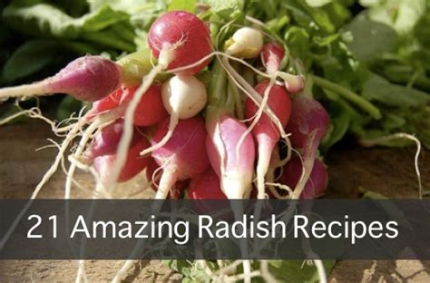 New And Innovative At And Radish by 21 Amazing Radish Recipes Homestead Survival