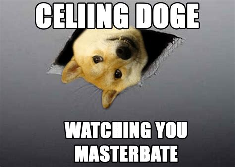 Know Your Meme Doge - ceiling doge doge know your meme