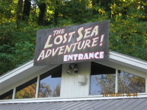 glass bottom boat tours kentucky take the glass bottomed boat tour at the lost sea in tennessee
